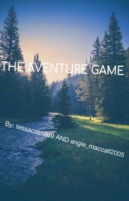 The Aventure Game