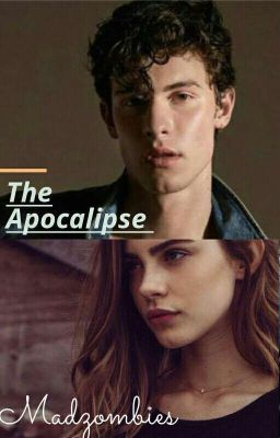 The Apocalipse : Shawn Mendes